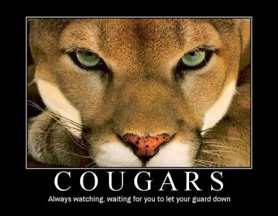 le cougare