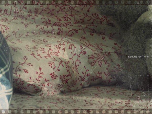 """""""Le lit est un terrain d'entraînement du cercueil."""" - W.Allen"""
