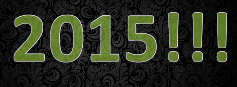 Mon bilan de l'année 2014