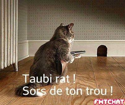 pour toi belle-ile216 ! :)