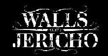 Walls Of Jericho - [HellFest 2010]          (vue au Hellfest2012)