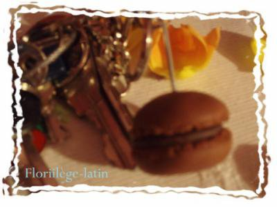 # Délice de macarons.