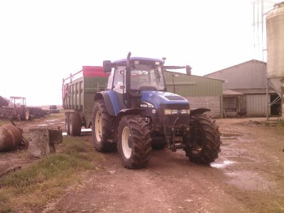 new holland en stage chez un eleveur