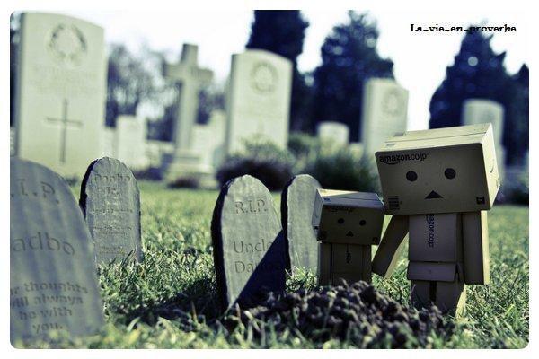 MORT ~1