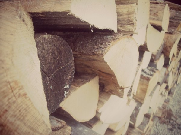 Bref, c'est des bous de bois :3♥