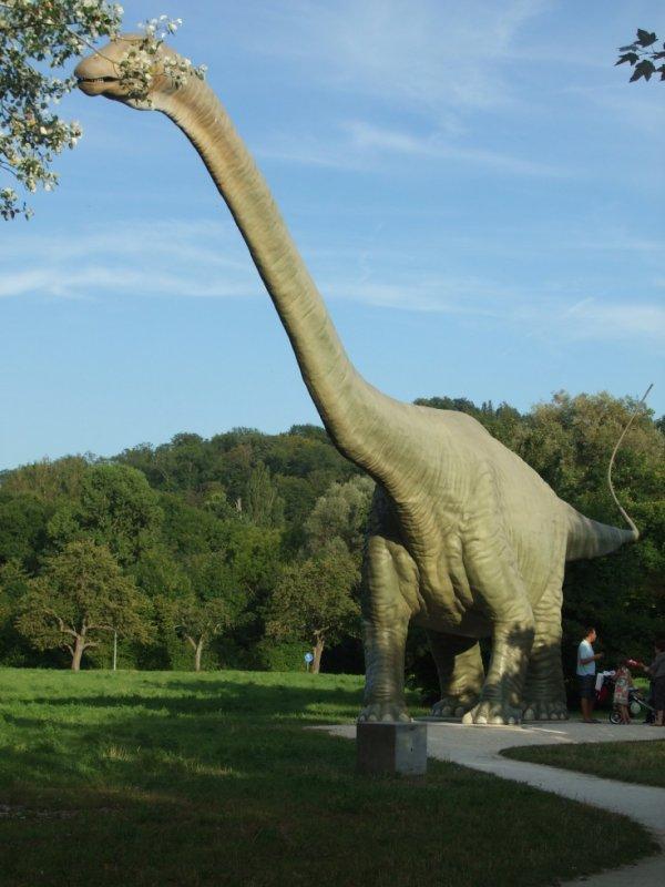 je suis a les voire   le tant  du parc .de  dinosaure