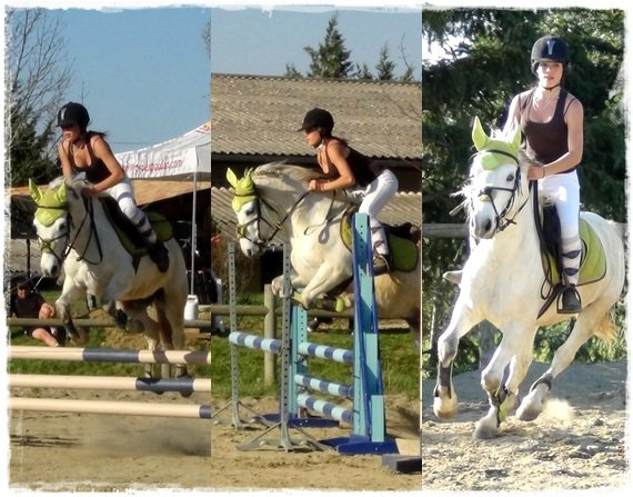 » Un cheval ne nous appartient pas. La seule chose que nous possédons, c'est le devoir de s'en occuper correctement ❤.