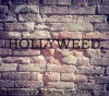 HOOLLYWEED