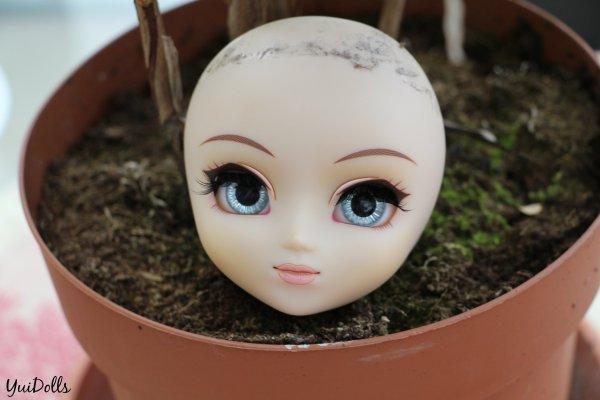 Quelques petites nouvelles custo's chez mes dolls + 2 photos ¤ bonus ¤