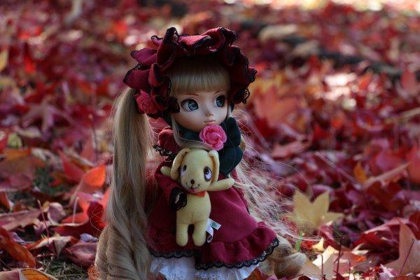 Séance photo Automnale avec ShiinobuuPullip ♥