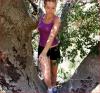 .       « Bridgit grimpe dans les arbres sur sa nouvelle photo de profil Twitter . Au naturel, bien sûr, intéressant, moins sûr ! »         .