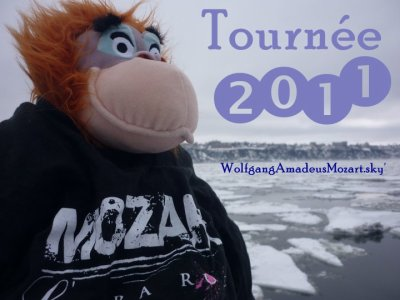 Tournée 2011
