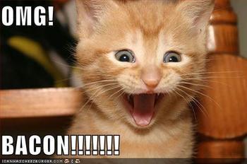 CATS 6!!!