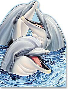 Dauphins6