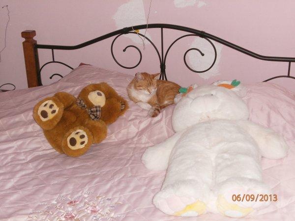Matou & Snoopy