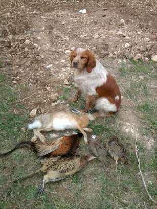 apès une journée de chasse