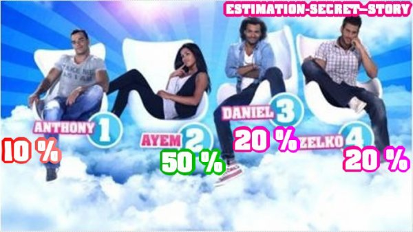 PREMIERES ESTIMATIONS DE VOTES : AYEM , DANIEL , ZELKO , ANTHONY