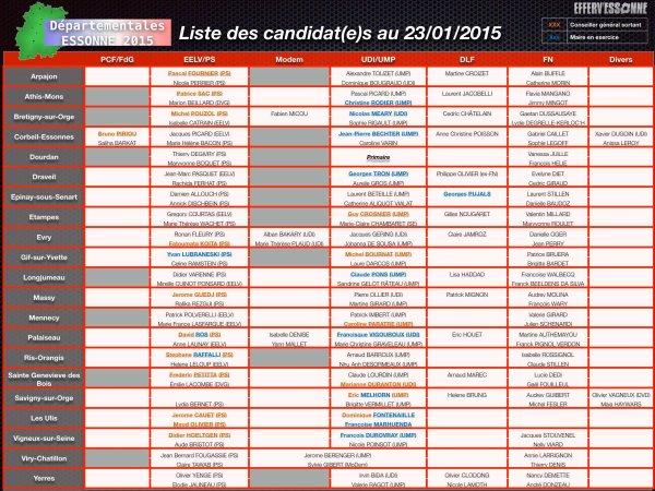 Elections départementales 2015 dans l'Essonne