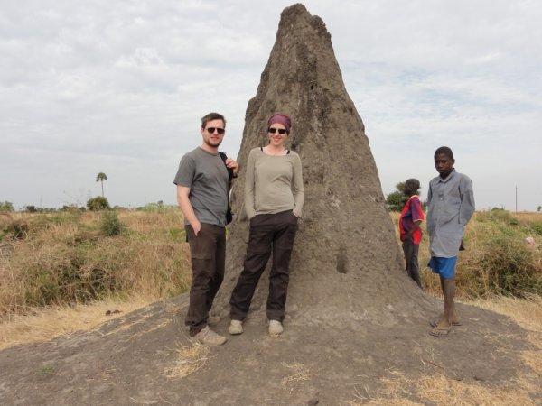 la visite dun termitier geante le senegal