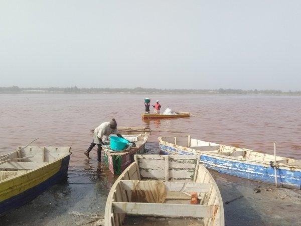 visite les ramasseurs de sel au lac rose