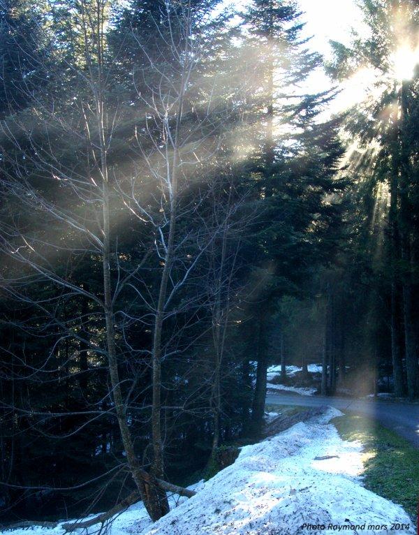 Rayons de soleil sous Bois et les 3 dents du PILAT(Mars 2014)