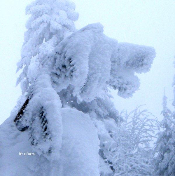 les FIGURINES de la neige