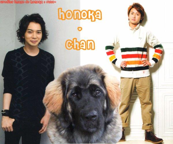 Honoka-chan