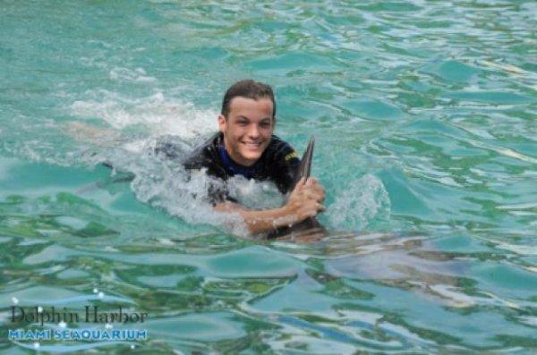 Liam & Louis aimes les Orques et Les Dauphins