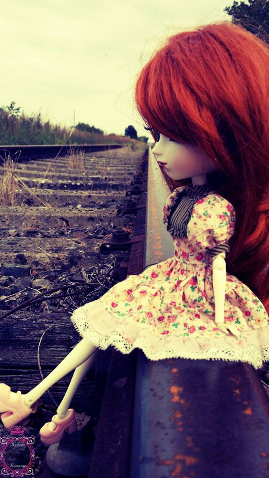 Ginger on a rail way
