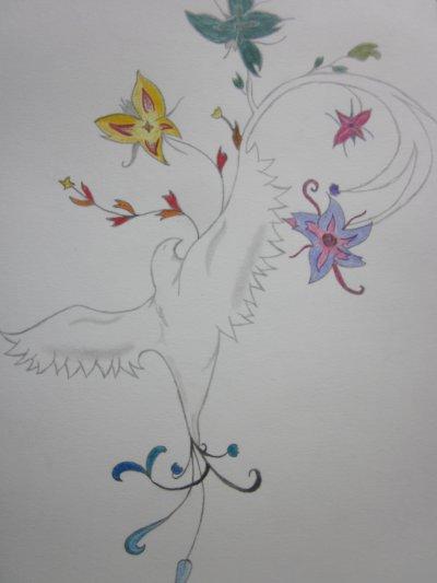 L'oiseau en couleur