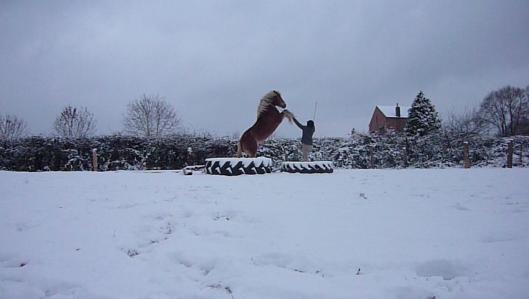 les effets de la neige sur son organisme ^^