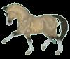 Magic-Horses-x3