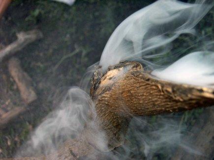 Nos vies s'envolent en fumée.