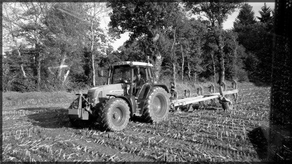 semi de céréales 2013