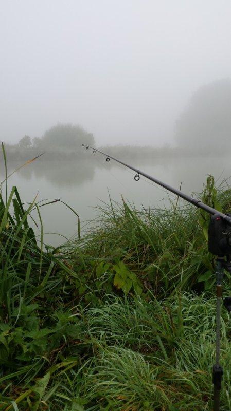 Ça pêche