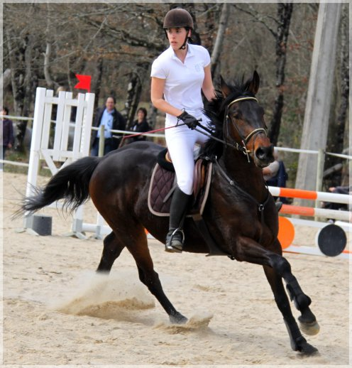 """Article 06; """"Le cheval est la projection des rêves que l'homme se fait de lui-même : fort, puissant, beau, magnifique. Il nous offre la possibilité d'échapper à la monotonie de notre condition."""""""