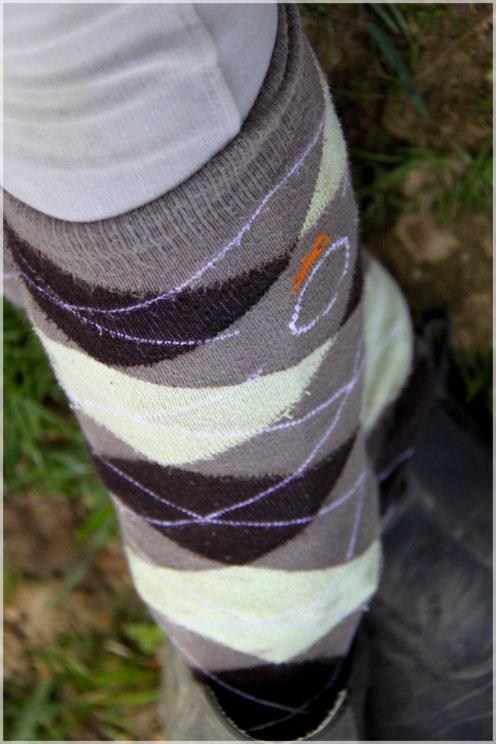 """Article 08; """"Les cavaliers;les seuls qui ont la classe avec leur chaussettes par dessus leur pantalon ! """""""