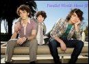 Photo de Parallel-World-About-JB