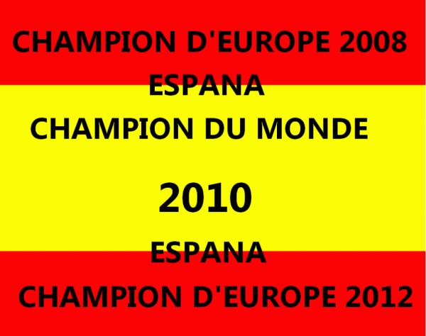 ♥ ESPAGNE CHAMPION D'EUROPE 2012 ♥