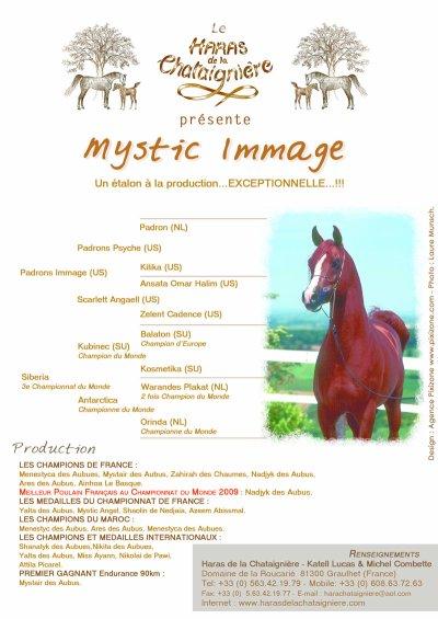 Mystic Immage