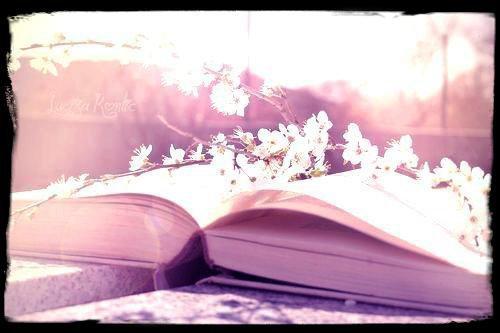 La vie n'est qu'un roman <3
