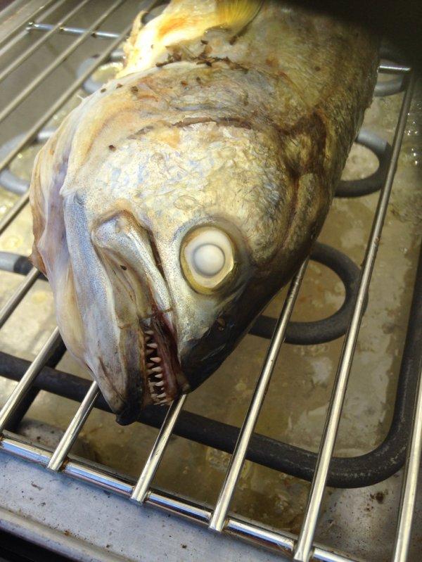 Je déteste ces poissons