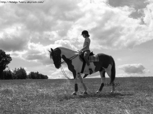 Un cheval se fiche éperdument des grosses voitures des belles maisons ou des vêtements de marque. Un morceau de pain dur à mordillé ça lui va très bien. Les chevaux se moquent que vous soyez riches ou pauvres, beaux ou laids, intelligents ou bêtes, donnez lui de l'amour et il vous en donnera. Combien d'humains sont capables de ça ? Combien de gens sont capables de vous donner le sentiments que vous compter vraiment pour eux ? Combien de gens arrivent à vous donner l'impression que vous êtes unique au monde ? ♥