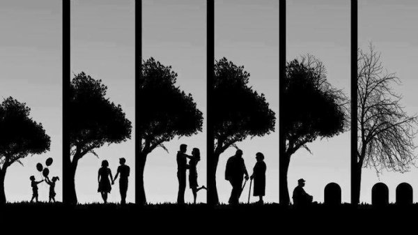Si seulement une histoire d'amour pouvait durer toute une vie ...<3