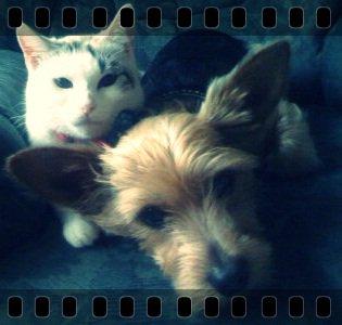 Caline & Elvis ...