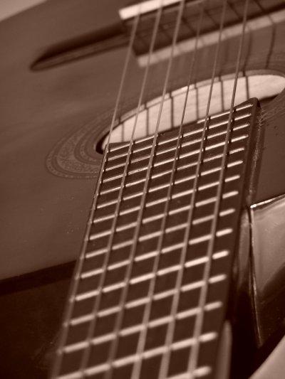 Yo la vida por la música, sólo por la música ...