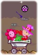 Mon kiwi *-*