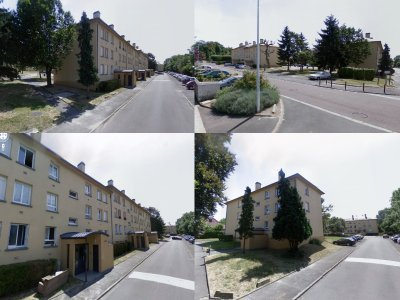 Champs sur Marne (les jonquilles)