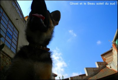 Ghost & Le Beau temps !