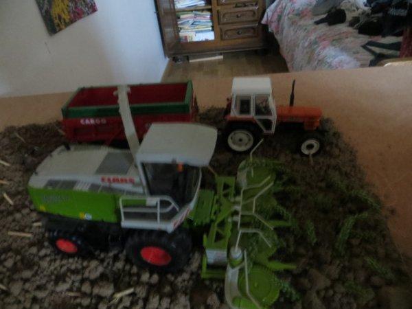 ensilage avec ensileuse claas et un tracteur someca et une benne cargo